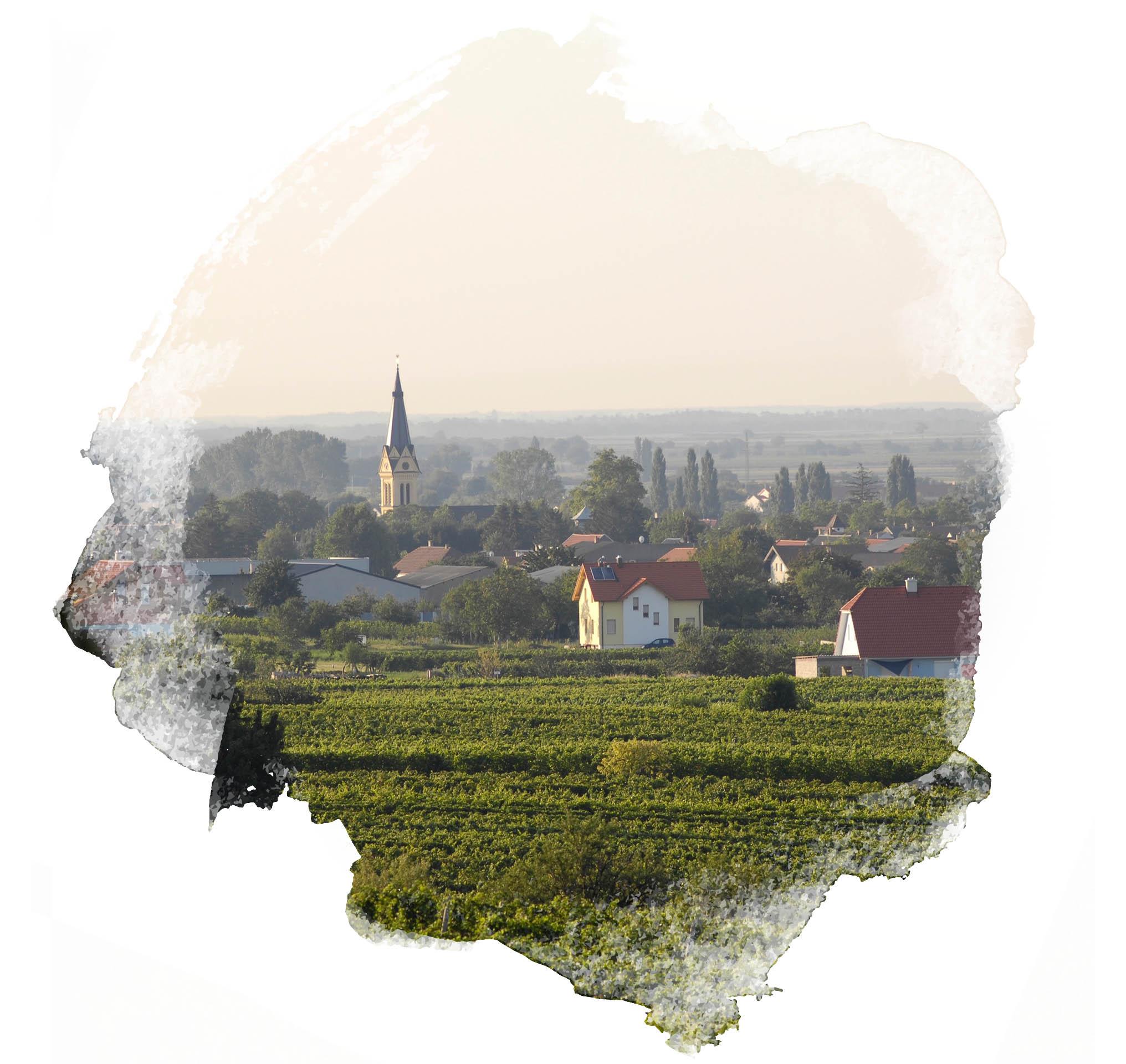 Weingut Wenzl-Kast Gols